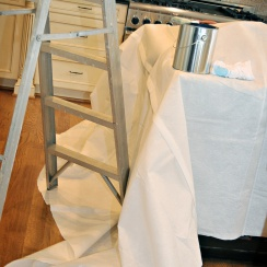 ladder on leak-resistant, double guard drop cloth